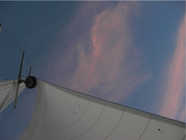 wpid-CIMG2637-2010-11-16-16-02.jpg