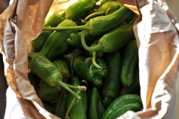 pimiento de padron peppers - so good but gone now